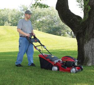 Servicio de mantenimiento de jardines en Alcorcon